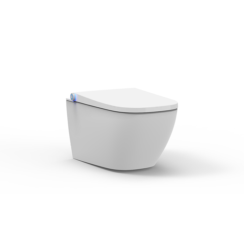 super slim shape bidet seat