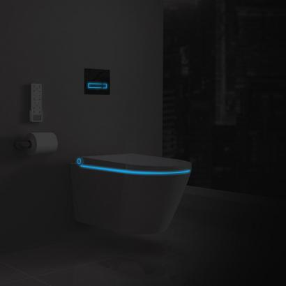 Smart bidet seat douche WC